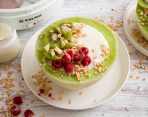 Yogurtera Yelmo YG-1700 1.1lts